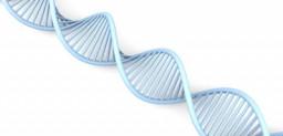 tests nutrigenetico