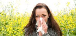 Diferentes tipos de alergias